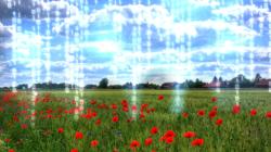 Das Themenbild Digitales Landleben zeigt eine wilde Blumenwiese mit aufsteigenden Datenströmen.