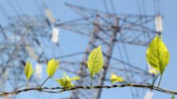 Das Themenbild Smart Energy zeigt einen zarten grünen Ast vor einer Stromtrasse.